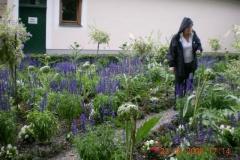 2008-0621stulrich-051